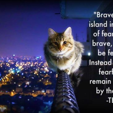 What is bravery?
