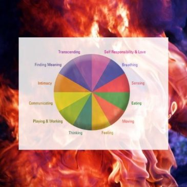 The 4 Elements of Whole Person Wellness – Part I – Fire and Air